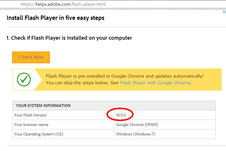 Chrome not updating flash player